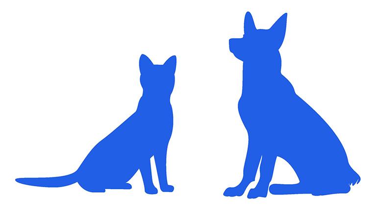 対象動物 犬・猫