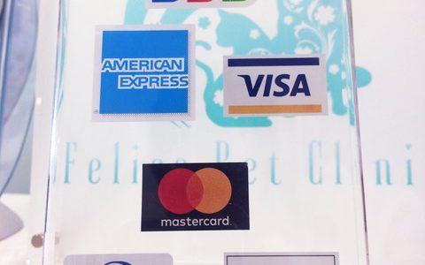 クレジットカード払いが可能に